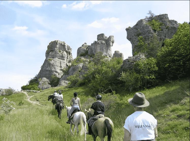 La Ferme Équestre de Vispens à Saint Affrique dans L'Aveyron